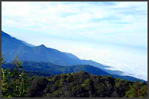 Doi Inthanon Natl. Park 3
