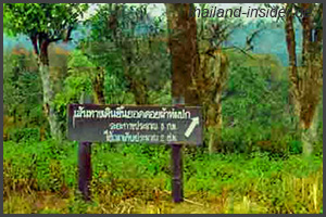 Doi Phahom Pok Nationalpark 2