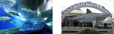 Underwaterworld Pattaya Aquarium